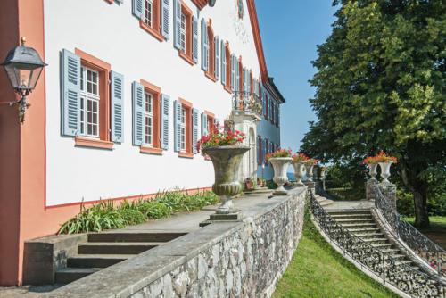 Freitreppe vor dem Schloss